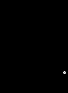 PADI-logo-074CAC07F7-seeklogo.com